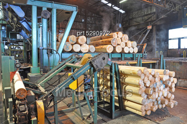 Pinus Radiata Logs Feed Into The Veneer Stripper At A Plywood Factory Stock Photo