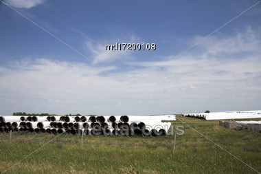 Pipe From Pipeline Stacked For Upcoming Project Saskatchewan Stock Photo