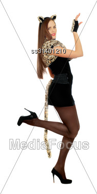 Playful Smiling Young Woman Dressed As A Cat. Isolated Stock Photo