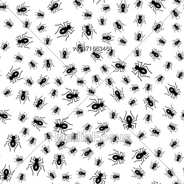 Poisonous Spider Seamless Pattern On White Background Stock Photo