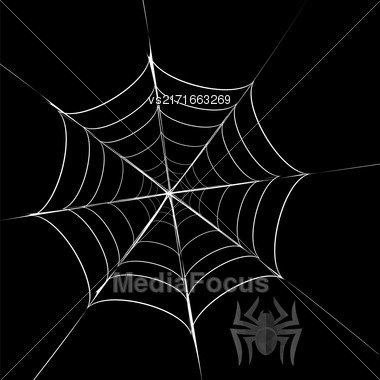 Polygonal Grey Spider And Her Cobweb On Black Background Stock Photo