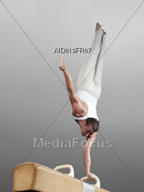 Pommel Horse Hand Stand Stock Photo