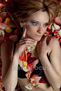 Portrait Of Pretty Young Woman Lying In Rose Petals Stock Photo