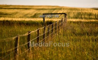 Prairie Fence In Summer In Saskatchewan Canada Stock Photo