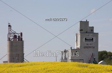 Prairie Grain Elevator With Blue Sky And Crops Saskatchewan Stock Photo