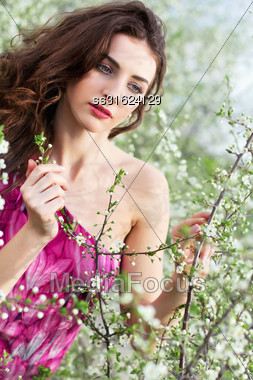 Pretty Curly Brunette Touching The Branch Of Flowering Tree Stock Photo