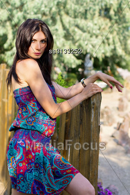 Pretty Young Brunette In Dress Near The Wooden Fence Stock Photo