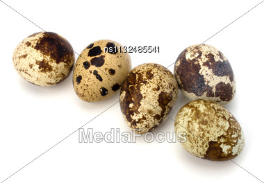Quail Eggs Isolated On White Background Close Up Stock Photo