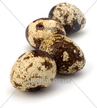 Quail Eggs Isolated On White Background Close Up Stock Photo