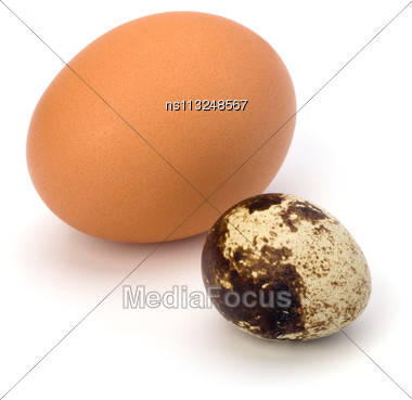 Quail And Hen's Eggs Isolated On White Background Close Up Stock Photo