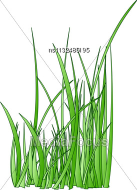 Raster. Stylized Grass Silhouette Stock Photo