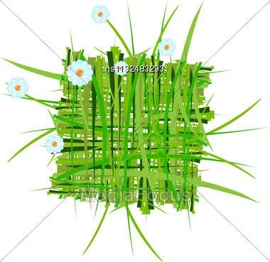 Raster. Summer Grass Decoration Stock Photo