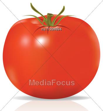Raster. Tomato Stock Photo