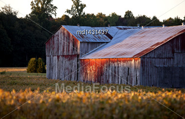 Red Barn At Sunset Weathered Agriculture Ontario Canada Stock Photo