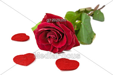 Red Rose With Hearts Stock Photo