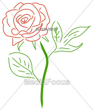 Red Rose Isolated On White, Vector Illustration Stock Photo