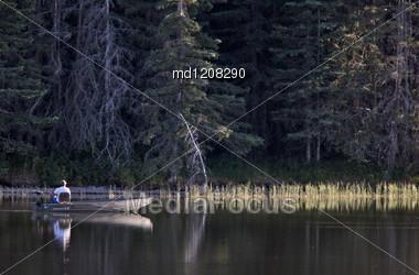 Reesor Lake Cypress Hills Alberta Canada Fall Autumn Stock Photo