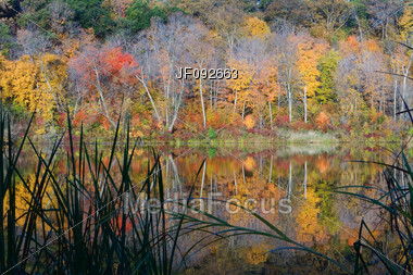 Reflections Of Autumn At Williams O'Brian State Park Stock Photo