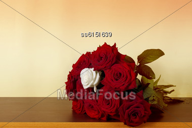 Retro Background Is With Red And White Roses And A Blank Place For Text Stock Photo