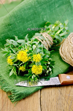 Rhodiola Rosea Flowers Tied With Twine, Ball Of Twine, Knife On Green Napkin On A Wooden Board Stock Photo