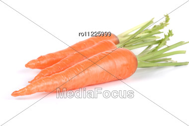 Ripe Carrots Stock Photo