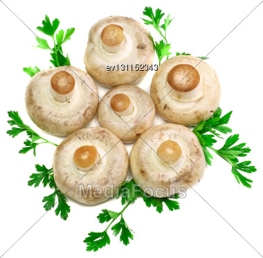 Ripe Mushroom Champignon With Green Parsley Leaves Isolated On White Background Stock Photo