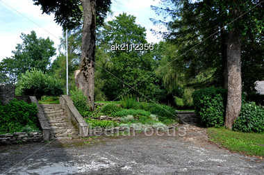 Road And Old Stairs On A Background Of Trees Stock Photo