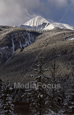 Rocky Mountains In Winter Alberta Canada Banff Park Stock Photo