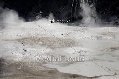 Rotorua Mud Pools New Zealand Thermal Area Stock Photo