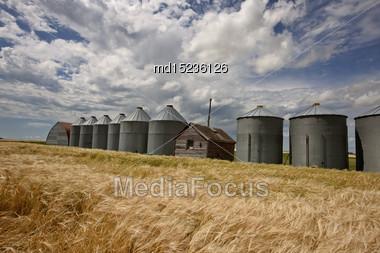 Row Of Granaries In Manitoba Canada Prairie Stock Photo