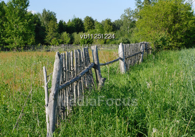 Rural Landscape In The Middle Of Summer, The Field And The Old Fence Stock Photo