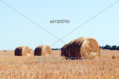 Rural Landscape With Straw Rolls Stock Photo