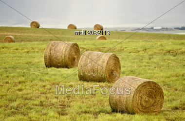 Rural Saskatchewan In Summer With Crops Canada Stock Photo