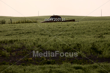Saskatchewan Farmland In Summer Crops And Sky Stock Photo
