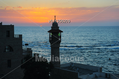 Sea, The Houses And Trees Of Old Jaffa Stock Photo
