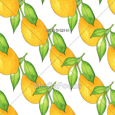 Seamless Lemon Tree Branch, Watercolor Painting On White Background, Vector Illustration Stock Photo