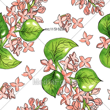 Seamless Pattern With Watercolor Flowers. Apple Tree Flower Branch.Vector. Hand Drawn Stock Photo