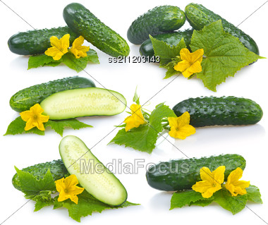 Set Of Cucumber Vegetables With Leafs And Flowers Stock Photo