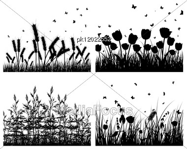 Set Of Four Vector Grass Silhouettes Backgrounds Stock Photo