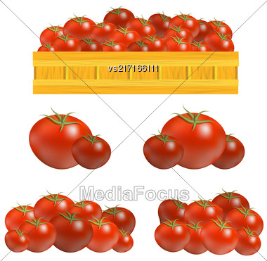 Set Of Fresh Red Tomatoes Isolated On White Background Stock Photo
