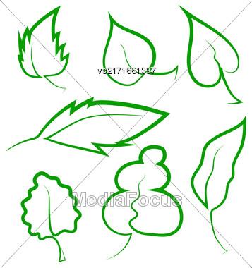 Set Of Leaf Icons Isolated On White Background Stock Photo
