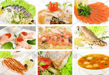 Set Of Different Tasty Fish Dish Stock Photo