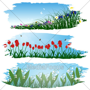 Set Of Three Brushstroke Frames With Flower Meadow Background Stock Photo