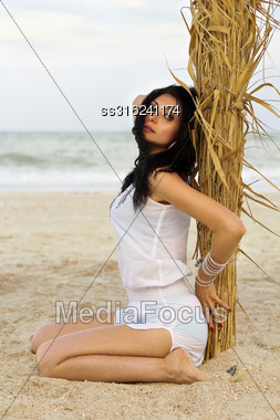 Sexy Young Brunette Sitting Near The Palm Tree Stock Photo