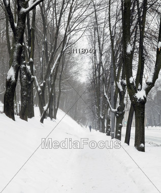 Sidewalk About Park During A Snowfall Stock Photo