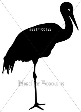 Silhouette Bird Crane On A White Background Stock Photo