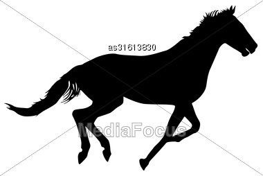 Silhouette Of Black Mustang Horse Vector Illustration Stock Photo