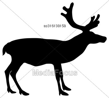 Silhouette Deer With Great Antler On White Background. Vector Illustration Stock Photo