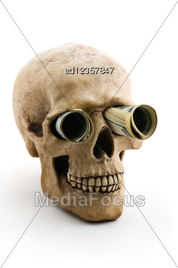 Skull With Money Stock Photo