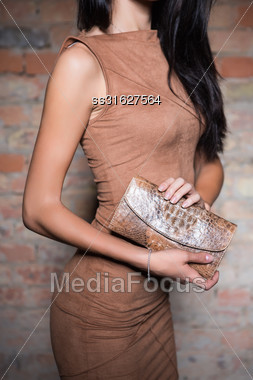 Slim Brunette Wearing Brown Dress Posing With Purse Stock Photo